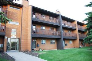 Exceptional 3 bedroom Apartment Available! Must see!
