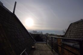 SPACIOUS 2 BED - CLAPHAM - ROOF TERRACE