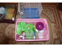 Hamster Cages (2) and various other accessories including interconnecting tubes
