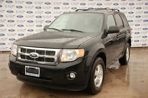 2012 Ford Escape XLT*Leather*FWD*V6*Moonroof