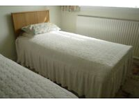 Pair of Matching Twin Single Beds with Wooden Headboards