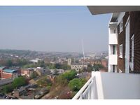 VERY MODERN FULLY FURNISHED 1BED IN LEWISHAM. CLOSE TO LADYWELL STATION. AVAIALBLE 12TH OCTOBER.