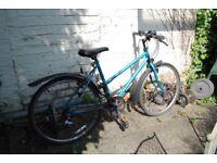 Laidies Raleigh Mountain Bike