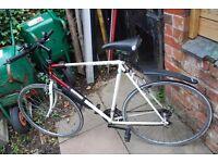 Mens 21 gear Pioneer Hybrid Bike