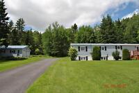 IMMACULATE HOME ON 1.6 ACRES ON AMMON RD!