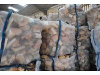 Cubic Meter of Quality Softwood Logs