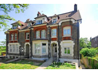 Stunning spacious studio apartment in crouch hill N4