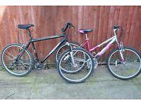 mans and ladies mountain bikes £45 each