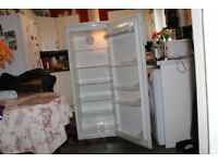 Tall larder fridge white height 143cm