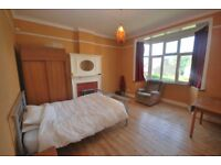 Large Double Room in a 3 Bedroom House with Reception & Garden. Available End Nov