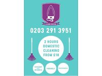 Professional Cleaning Services from £9ph