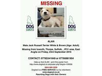 ALAN MISSING DOG JRT