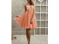 Coral Peach Bridesmaid/Prom Dress