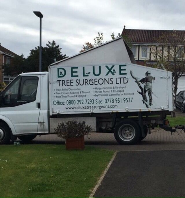 Transit Tipper Tree Surgeon In Houghton Le Spring Tyne