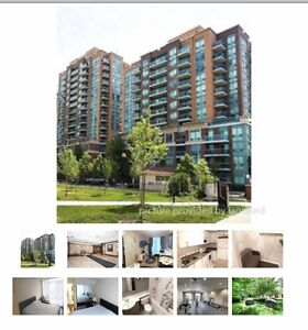 15 Michael Power Place, Toronto Stratford Kitchener Area image 1
