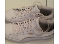 Ladies puma basket