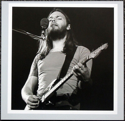 PINK FLOYD POSTER PAGE DAVID GILMOUR . H18