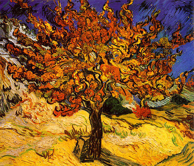 The Mulberry Tree, c. 1889 Poster Print by Vincent van Gogh, 28x24
