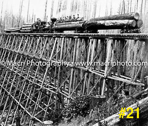 Sawmill old logging photos Strathcona County Edmonton Area image 7