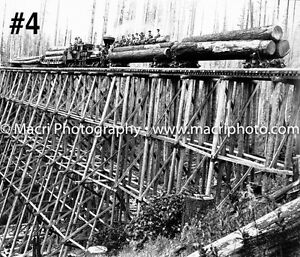 Sawmill logging and lumber photos Strathcona County Edmonton Area image 5