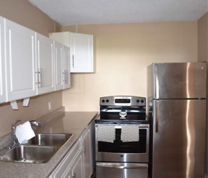 2 BR Apartment in Downtown (1st September) URGENT