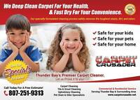 Professional Carpet,Tile&grout,Upholstery steam cleaning!!!