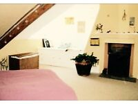 Large Double Room with fireplace in rural flat share *
