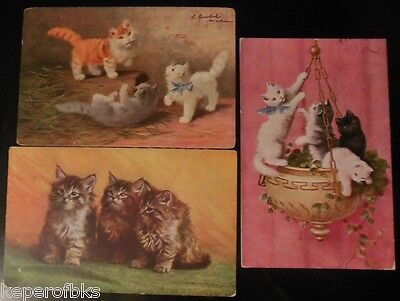Pretty Fluffy Kitty Cats Playing Climbing - 3 Vintage Artist Signed Postcards