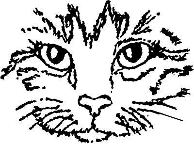 Lothian Cat Rescue