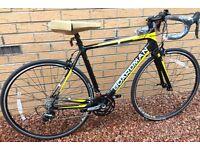 Boardman Team Carbon Brand New Road Bike Medium 53 Cms
