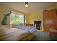CHEAP CHEAP CHEAP HUGE DOUBLE ROOM IN EAST DULWICH, IDEAL FOR KINGS WORKERS, CALL TODAY TO VIEW
