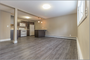 1 BR Apartment | Avail March 15 |South Regina | Newley Renovated