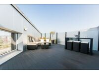 Luxury Penthouse for rental