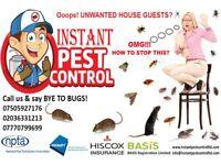 100% Guaranteed Pest Control 24/7 (Mice, Rat, Cockroach, Bedbugs, Wasps, Ants, Fleas, Moth, Beetles)