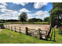 Equestrian Livery available - Dereham - £150 p.c.m.