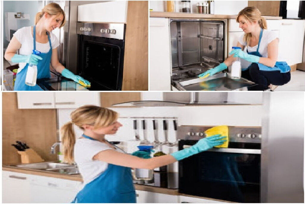 Fantastic The Best Domestic Cleaner Everything Brightshiningclean Download Free Architecture Designs Ferenbritishbridgeorg