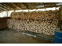 Kiln dried from ONLY £65 fully Seasoned Logs Not Wet Rubbish!!