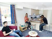 Single en-suite room available. Plymouth university students only!