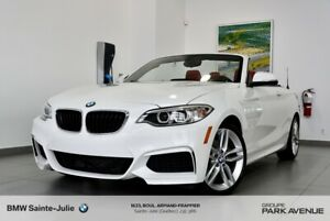 2016 BMW 2 Series Cuir Rouge Corail, Paddle shift