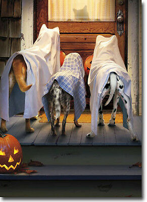 3 Dogs Trick Or Treating Funny Halloween Card - Greeting Card by Avanti Press - Avanti Halloween Cards