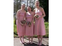 Dusky Pink Bridesmaids Dress (Size 10)