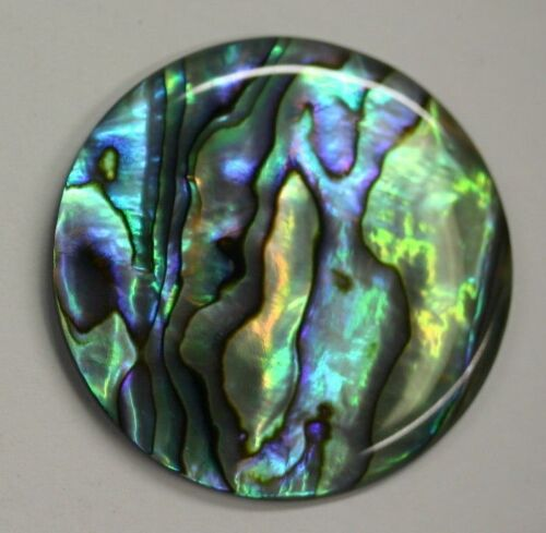 Natural Abalone Paua Shell Round Cabochon 16mm 18mm 20 25mm 30mm 38mm Jewelry