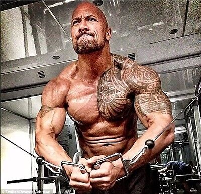 Dwayne Johnson   The Rock Fast Furious Muscle Strong Usa Star 13X13   D16