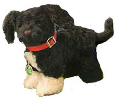 "HERMANN COBURG Portuguese Waterdog ""Bo"" Obama White House Collection Mohair NEW"