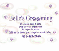 Belle's Grooming - Dog and Cat Grooming in Orleans