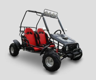 ATV Dune Buggy Go Kart 150cc Dealer Used