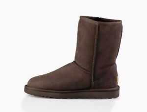 Uggs - Classic Short Boot in Chocolate