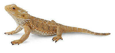BEARDED DRAGON LIZARD 13cm MODEL by CollectA 88567 *NEW WITH TAG*