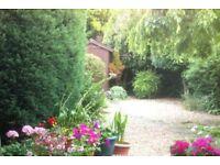 Garden Services, Hedgecutting, Gardener