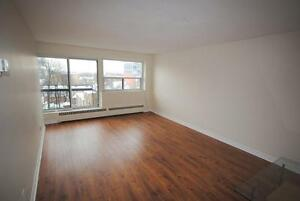 Large 1 Bedroom close to the GLEBE! GREAT CENTERTOWN LOCATION
